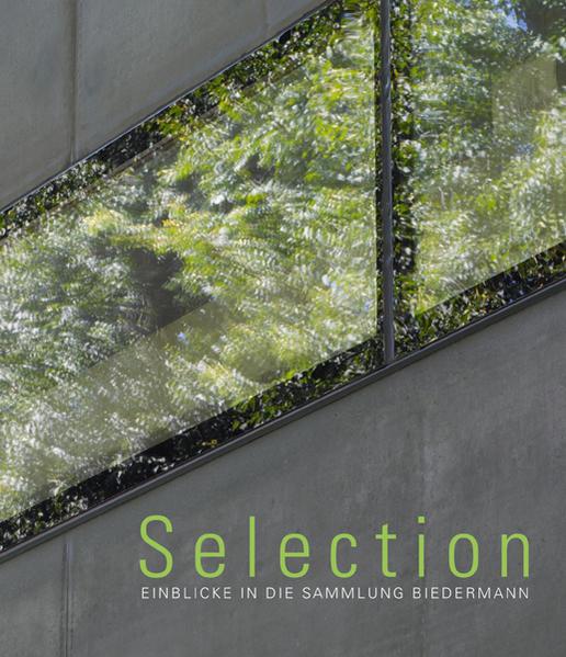 Selection - Einblicke in die Sammlung Biedermann - Coverbild