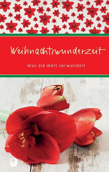 Weihnachtswunderzeit - Coverbild