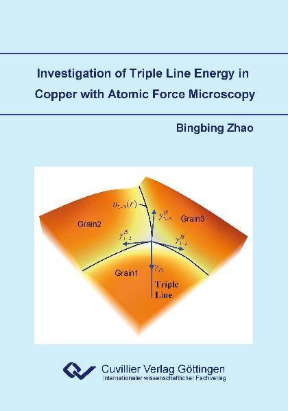 Investigation of Triple Line Energy in Copper with Atomic Force Microscopy - Coverbild