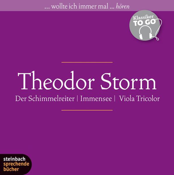 Theodor Storm - Drei ausgewählte Novellen Epub Kostenloser Download