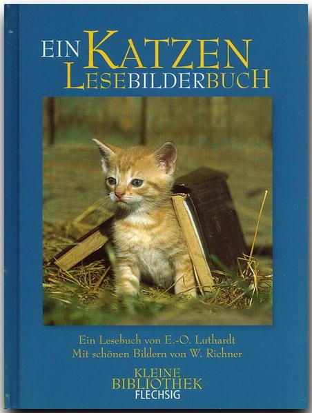Katzen LeseBilderBuch - Coverbild