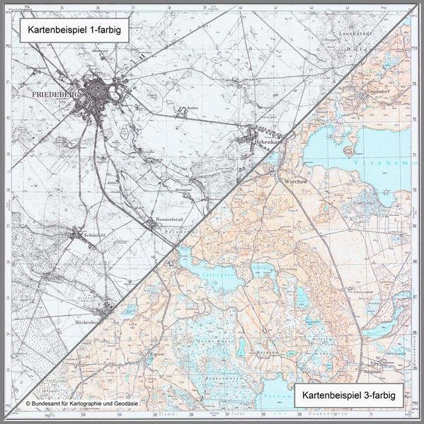 Bergfriede - Coverbild