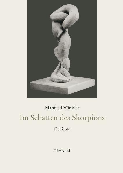 Im Schatten des Skorpions - Coverbild