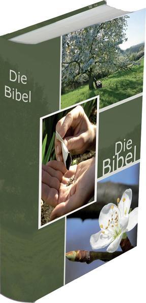 Die Bibel - größere Taschenbibel (Wiese) - Coverbild