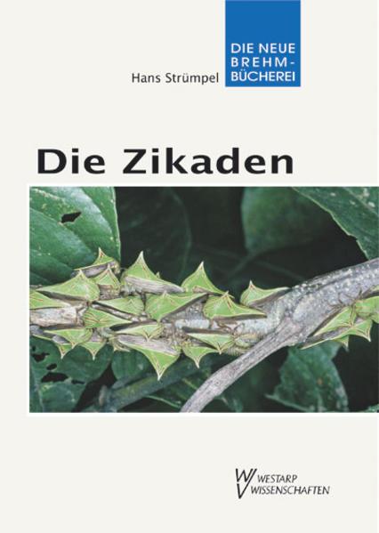 Die Zikaden - Auchenorrhyncha - Coverbild