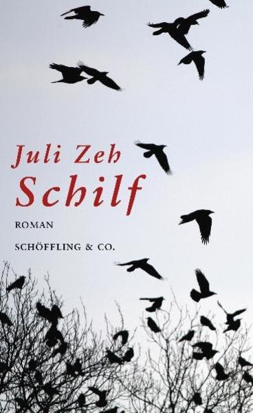 Schilf - Coverbild