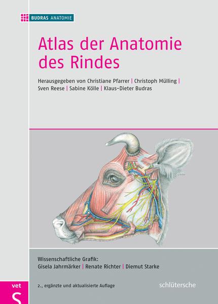 Atlas der Anatomie des Rindes - Coverbild