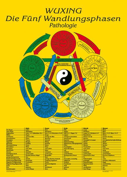 Die Fünf Wandlungsphasen: Pathologie - Coverbild