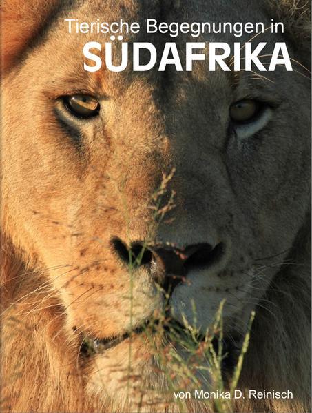 Tierische Begegnungen in Südafrika - Coverbild