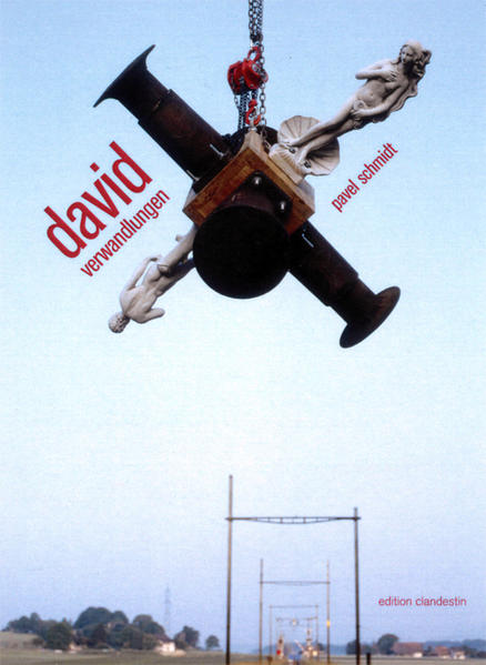 Schmidt, Pavel: david verwandlungen - Coverbild