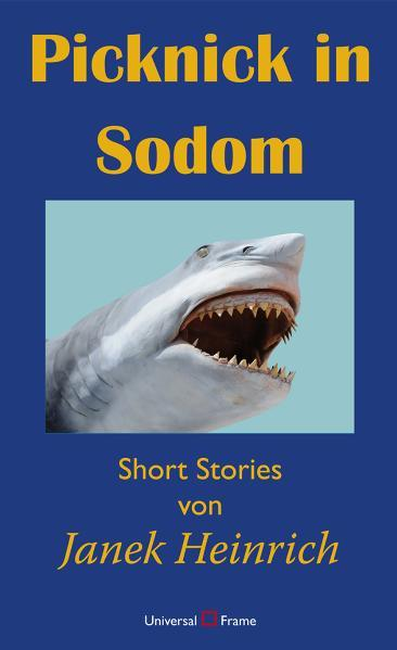 Picknick in Sodom - Coverbild