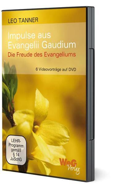 Impulse aus Evangelii Gaudium - Coverbild