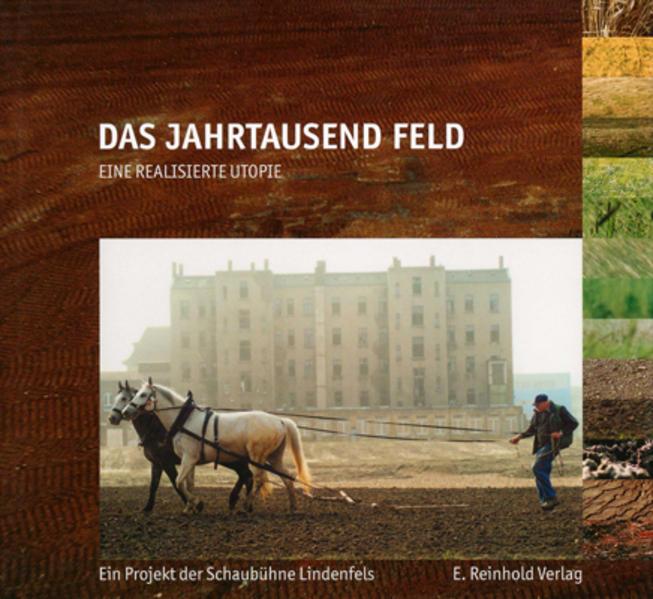 Das Jahrtausend Feld - Coverbild