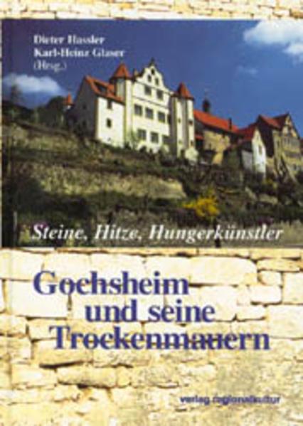 Steine, Hitze, Hunger Künstler - Coverbild