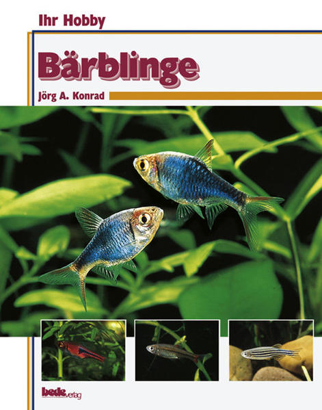 Bärblinge - Coverbild