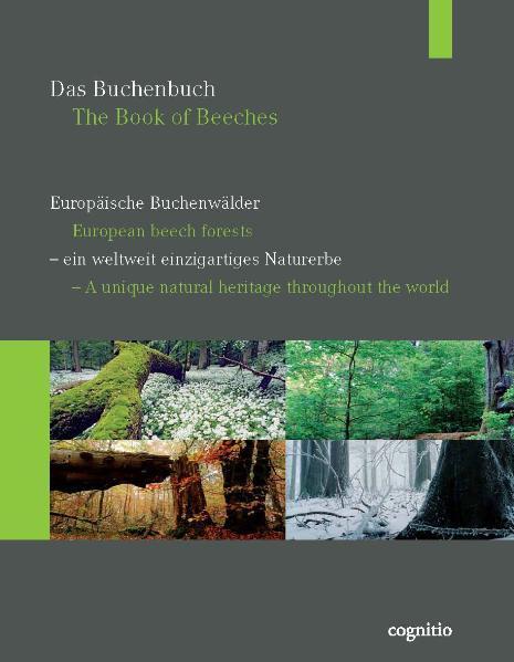 Das Buchenbuch - Coverbild