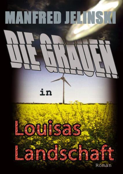 Die Grauen in Louisas Landschaft - Coverbild