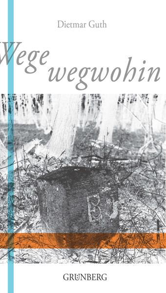 Wege wegwohin - Coverbild