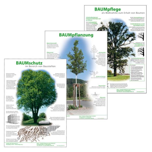 Infoposter Baumpflanzung, Baumpflege, Baumschutz - Coverbild