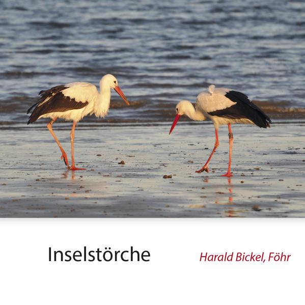 Inselstörche PDF Download