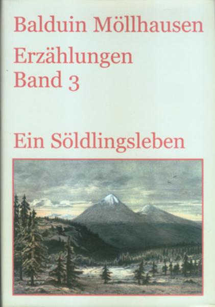 Ein Söldlingsleben und andere Erzählungen  (1872-1883) - Coverbild