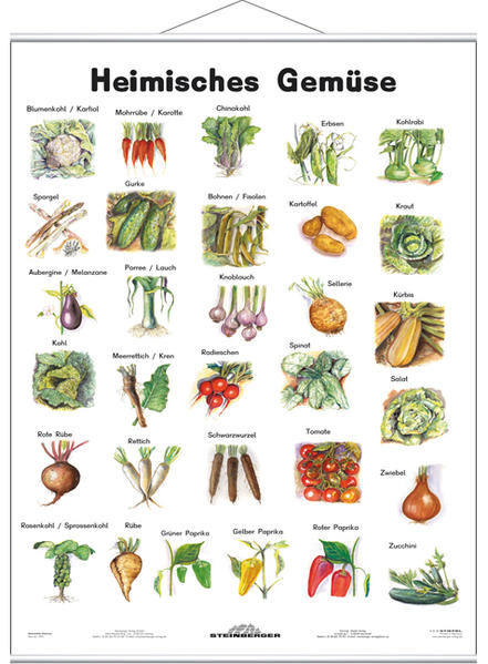 Heimisches Gemüse - Lernposter mit Metallbeleistung - Coverbild