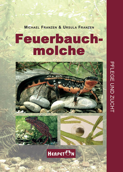 Feuerbauchmolche - Coverbild