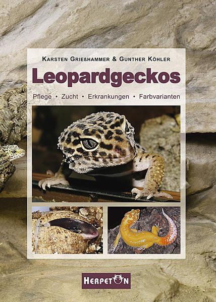 Leopardgeckos - Coverbild