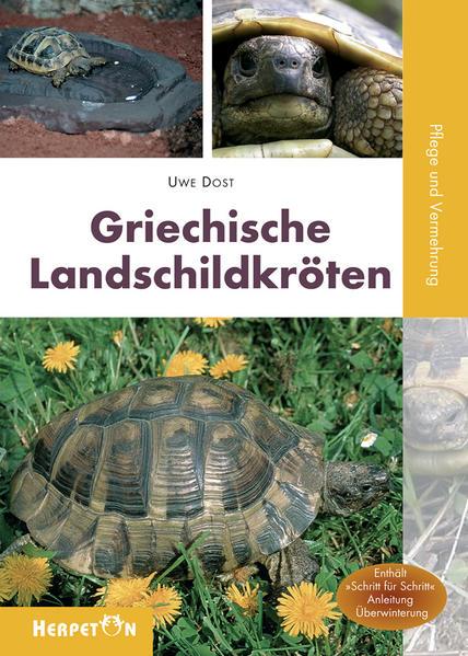 Griechische Landschildkröten - Coverbild