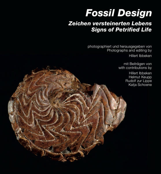 Fossil Design: Zeichen versteinerten Lebens / Signs of Petrified Life - Coverbild