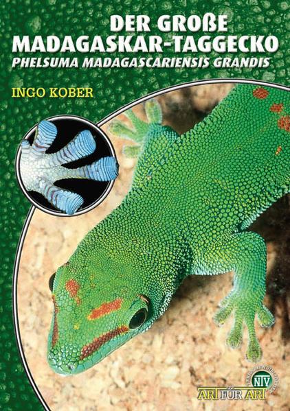 Free Epub Der Große Madagaskar Taggecko