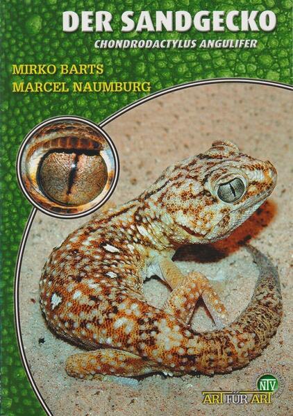 Der Sandgecko - Coverbild