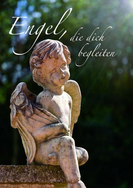 Engel, die dich begleiten - Coverbild