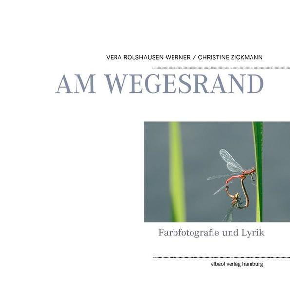 AM WEGESRAND - Coverbild