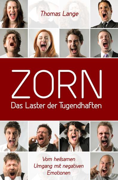 ZORN - das Laster der Tugendhaften - Coverbild