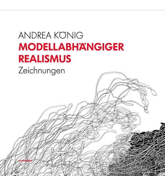 Modellabhängiger Realismus - Coverbild