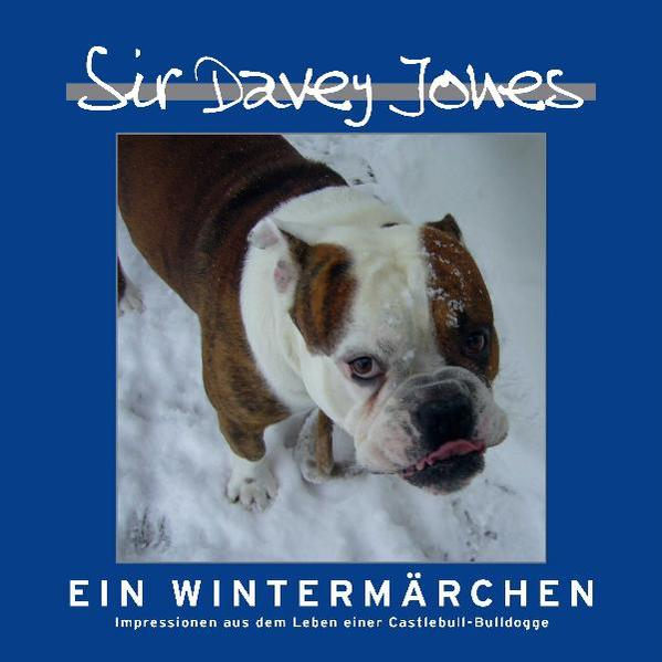 Sir Davey Jones - Ein Wintermärchen - Coverbild