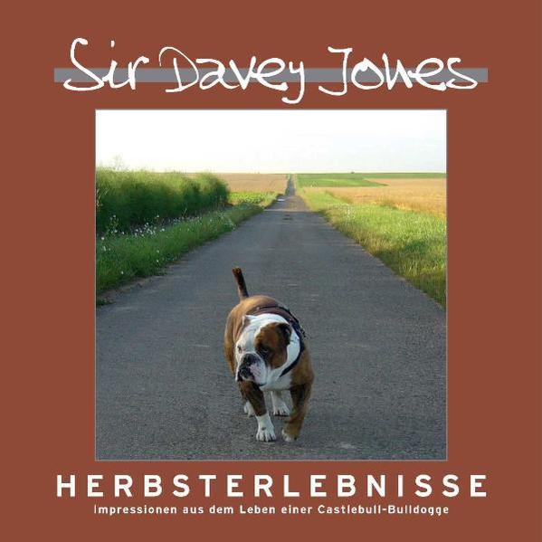 Sir Davey Jones - Herbsterlebnisse - Coverbild