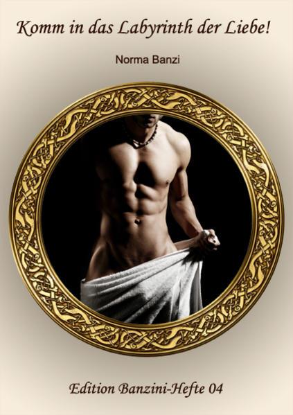 Komm in das Labyrinth der Liebe! - Coverbild