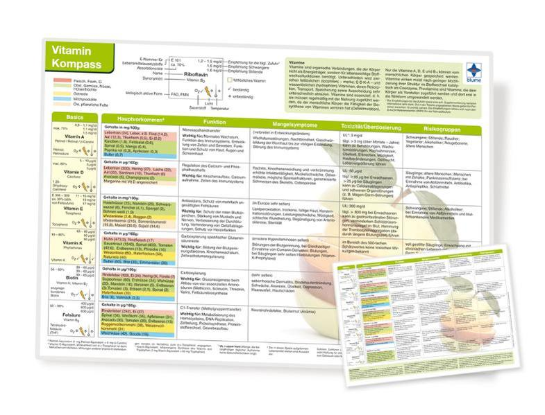 Vitamin Kompass, DIN A4, laminiert - Coverbild
