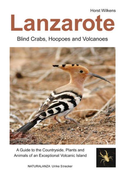 Lanzarote - Blind Crabs, Hoopoes and Volcanoes - Coverbild