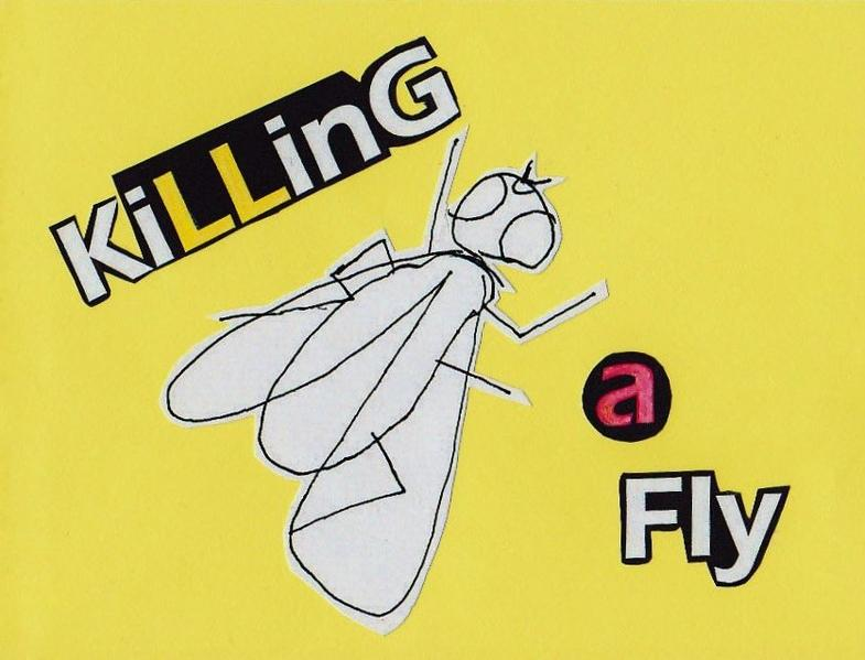 Killing A Fly - Coverbild