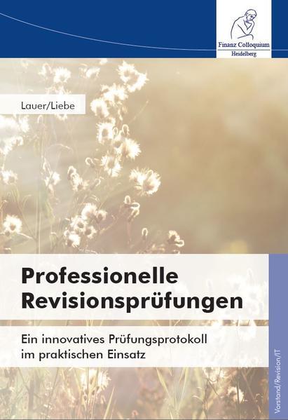 Professionelle Revisionsprüfungen - Coverbild
