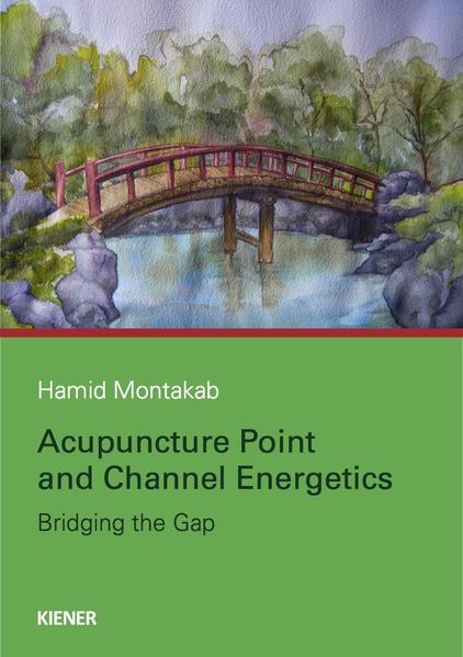 Acupuncture Point and Channel Energetics - Coverbild