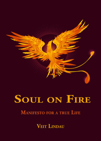 Soul on Fire. True Life Manifesto - Coverbild