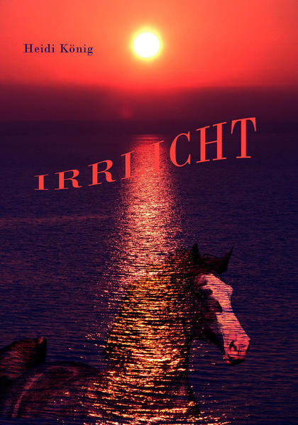 Irrlicht - Coverbild
