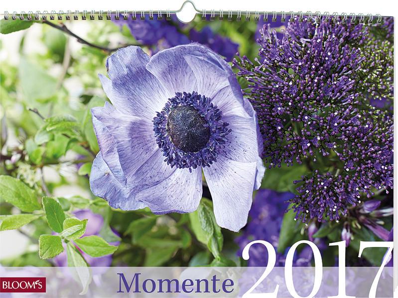 Momente 2017 - Coverbild