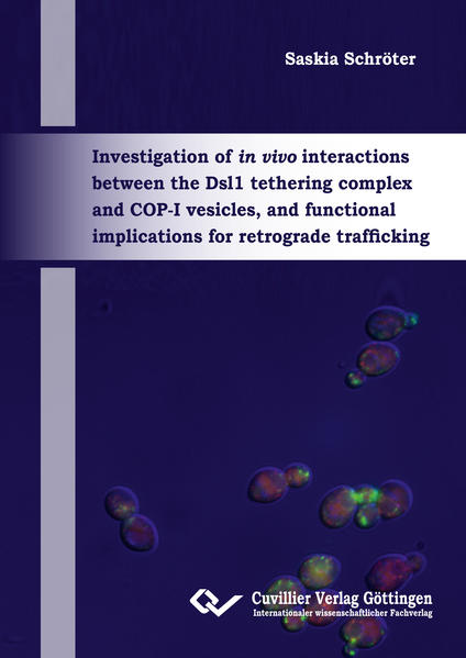 Investigation of in vivo interactions between the Dsl1 tethering complex and COP-I vesicles, and functional implications for retrograde trafficking - Coverbild