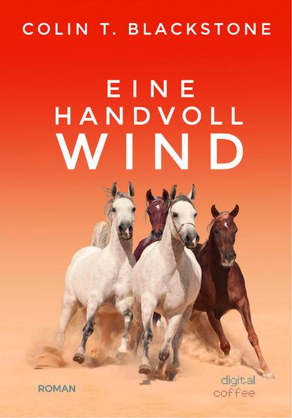 Eine Handvoll Wind - Coverbild