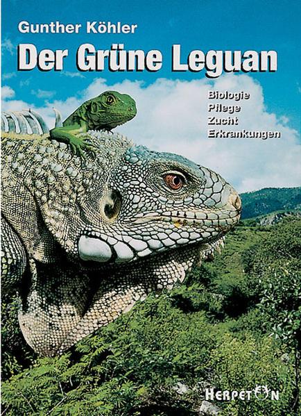 Der Grüne Leguan - Coverbild